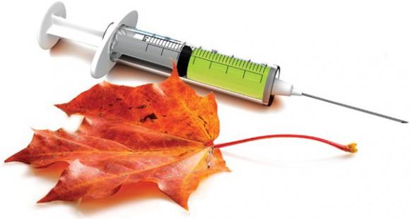 Нижнекамск вакцинируется от гриппа