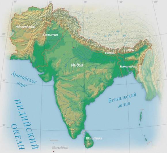 В Южной Азии началась усиленная подготовка к эпидемии птичьего гриппа