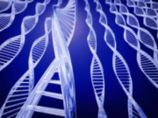 Грипп кроется в генах