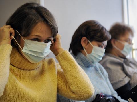 С камчатке приходят неутешительные вести по свиному гриппу