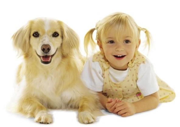 Присутствие собаки полезно для здоровья