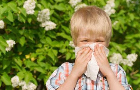Поллиноз у детей: причины, симптомы и лечение