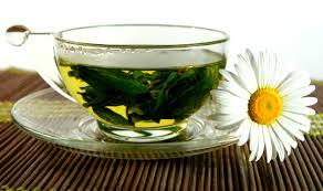 Чем полезны травяные, цветочные и ягодные чаи?
