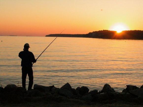 Лучший вариант для приобретения качественного инвентаря для ловли рыбы, только от мировых производителей