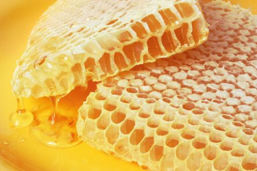 Лечение бронхита с помощью меда