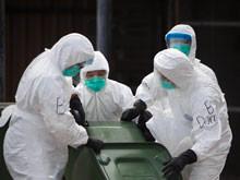 Китай, возможно, находится на грани эпидемии нового гриппа