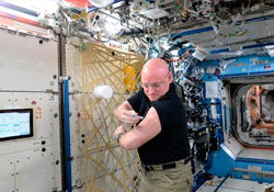 Надо ли делать прививки от гриппа астронавтам, находящимся на орбите?