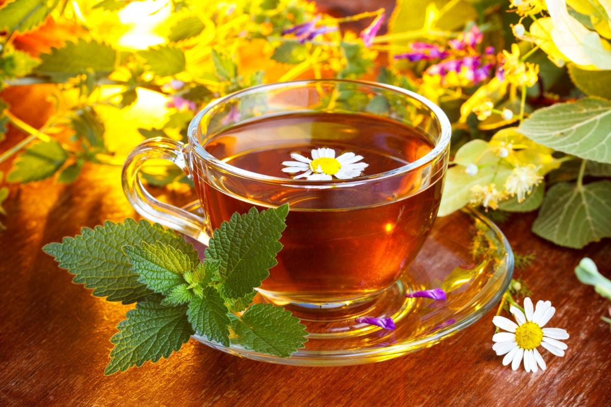 Травяные чаи против простуды