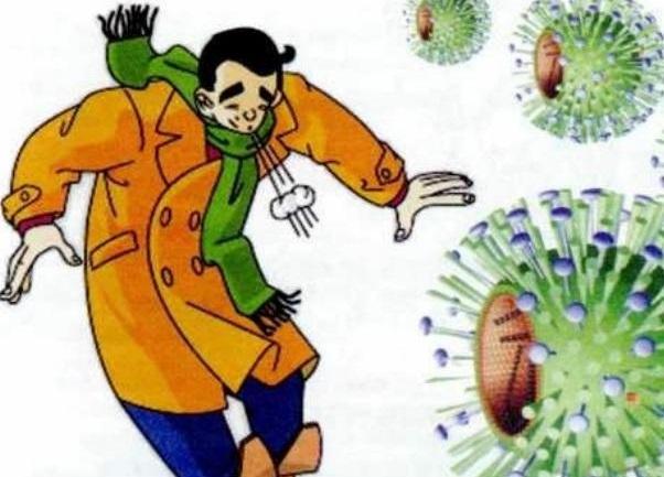 Слабые места человека: мишень для вируса гриппа