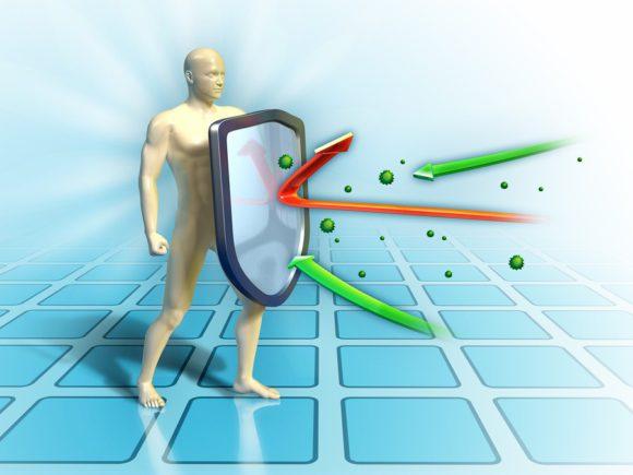 Иммунная система уничтожает микробов
