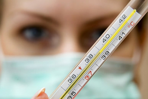Вирус гриппа: советы