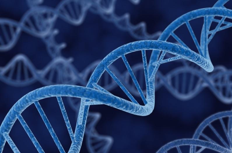 Ученые приблизились к победе над аутоиммунными заболеваниями