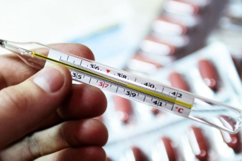Открытый учеными белок обещает положить конец эпидемиям гриппа