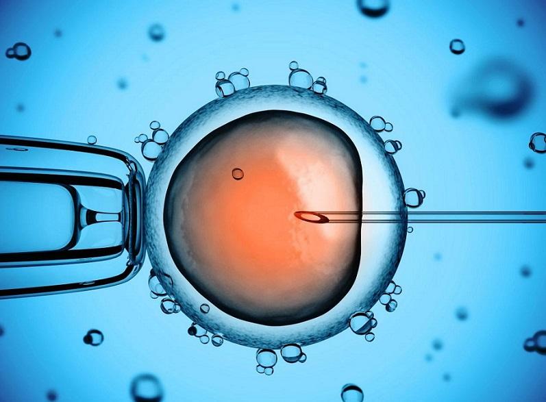 В США применили технологию редактирования генов в человеческих эмбрионах