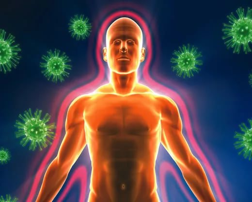 Хороший иммунитет понижает репродуктивную способность