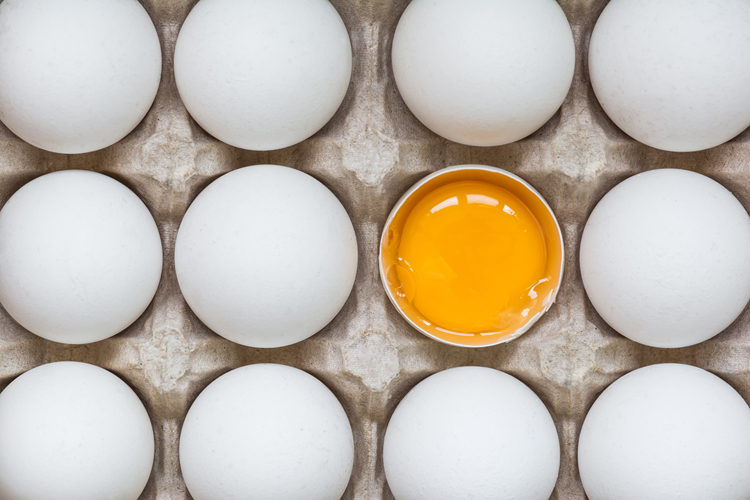 Генетически модифицированные куры несут яйца с лекарствами против рака и гепатита