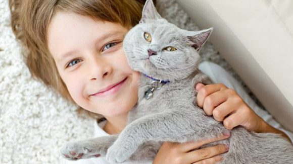 Кошки могут предотвратить развитие астмы у детей