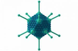 Вирусы герпеса и как от них лечат