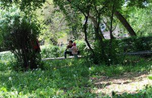 В Киргизии начался сезон активности клещей