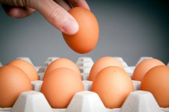 Чем опасны антибиотики в яйцах