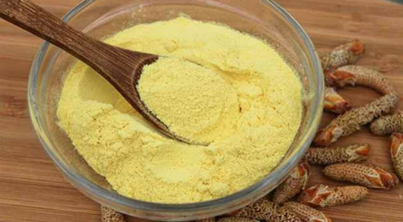Сосновая пыльца: особенности, назначение и применение, полезные свойства