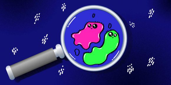 Три мифа о иммунной системе