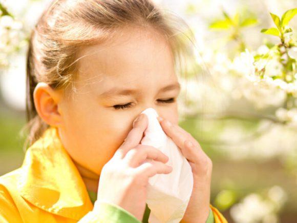 Эти продукты способны облегчить симптомы аллергии