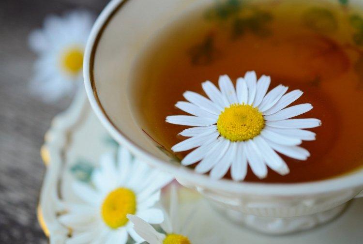 Лучшие рецепты травяных безалкогольных бальзамов при гриппе и простуде
