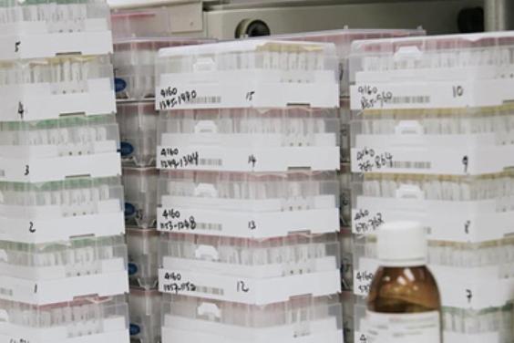 У переболевших COVID-19 подтвердили стойкий иммунитет к коронавирусу