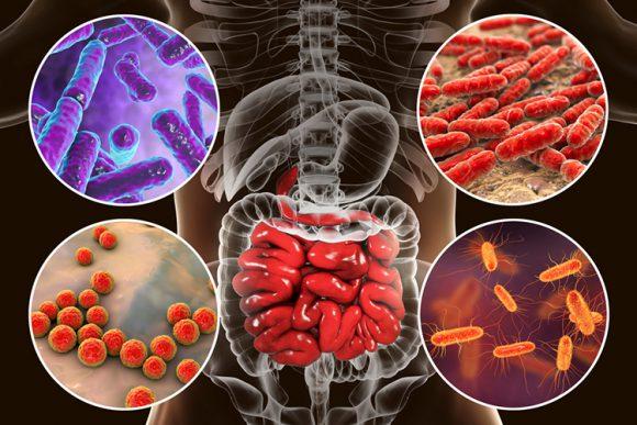 Пробиотики встали на защиту от коронавирусной инфекции