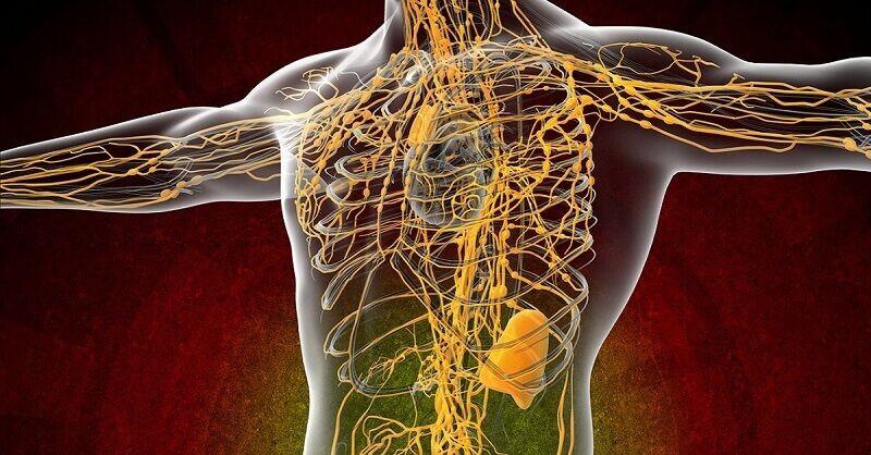 Доступные средства для очищения лимфатической системы