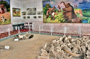 Украина для туристов. Археологический музей «Добраничевская стоянка»