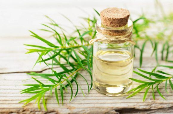 5 способов использования масла чайного дерева при кожных заболеваниях