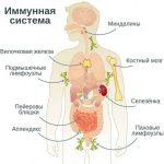 Вторичный иммунодефицит — симптомы и лечение