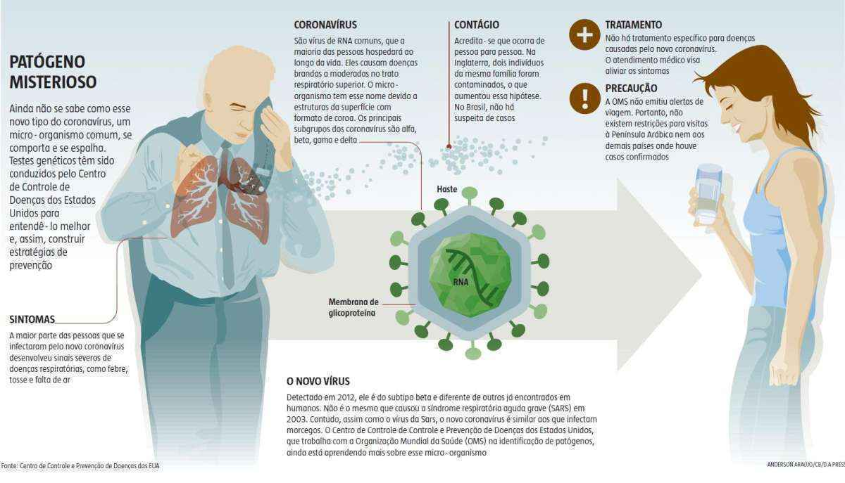 Как выращенные органы помогают лечить рак и коронавирус
